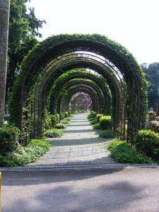 Japanese Cemetery (8)